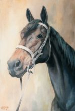 Horse - Original Painting by George Havrillay