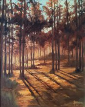 Sun through forest. Original painting by George Havrillay.
